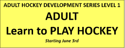 Adult Learn to Play - Level 1